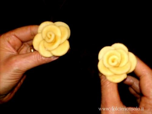 Roses2.jpg